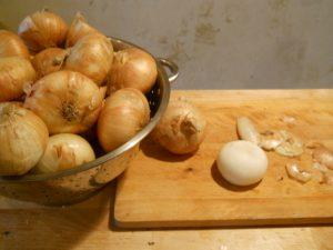 Vidalia Onion Transplants
