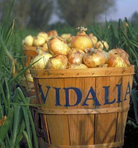 Vidalia Onions