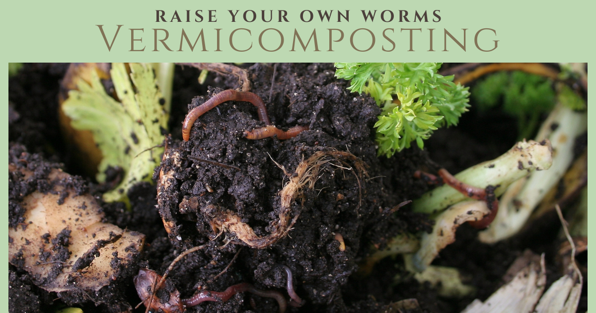 Raise Your Own Worms Vermicomposting