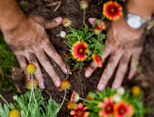 get your hands dirty planting a garden