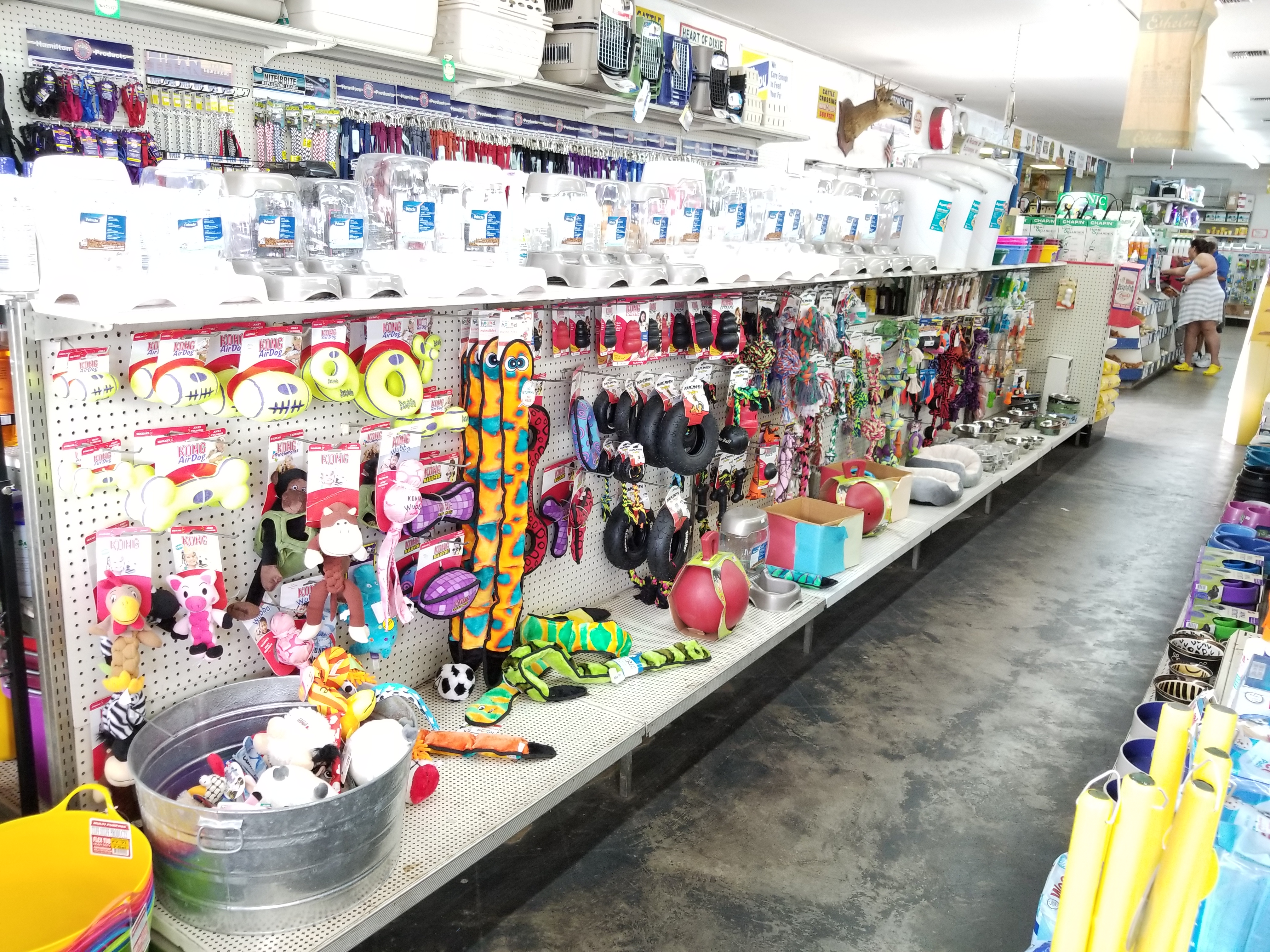 shells feed garden supply tampa florida pet supplies toys feeders waterers