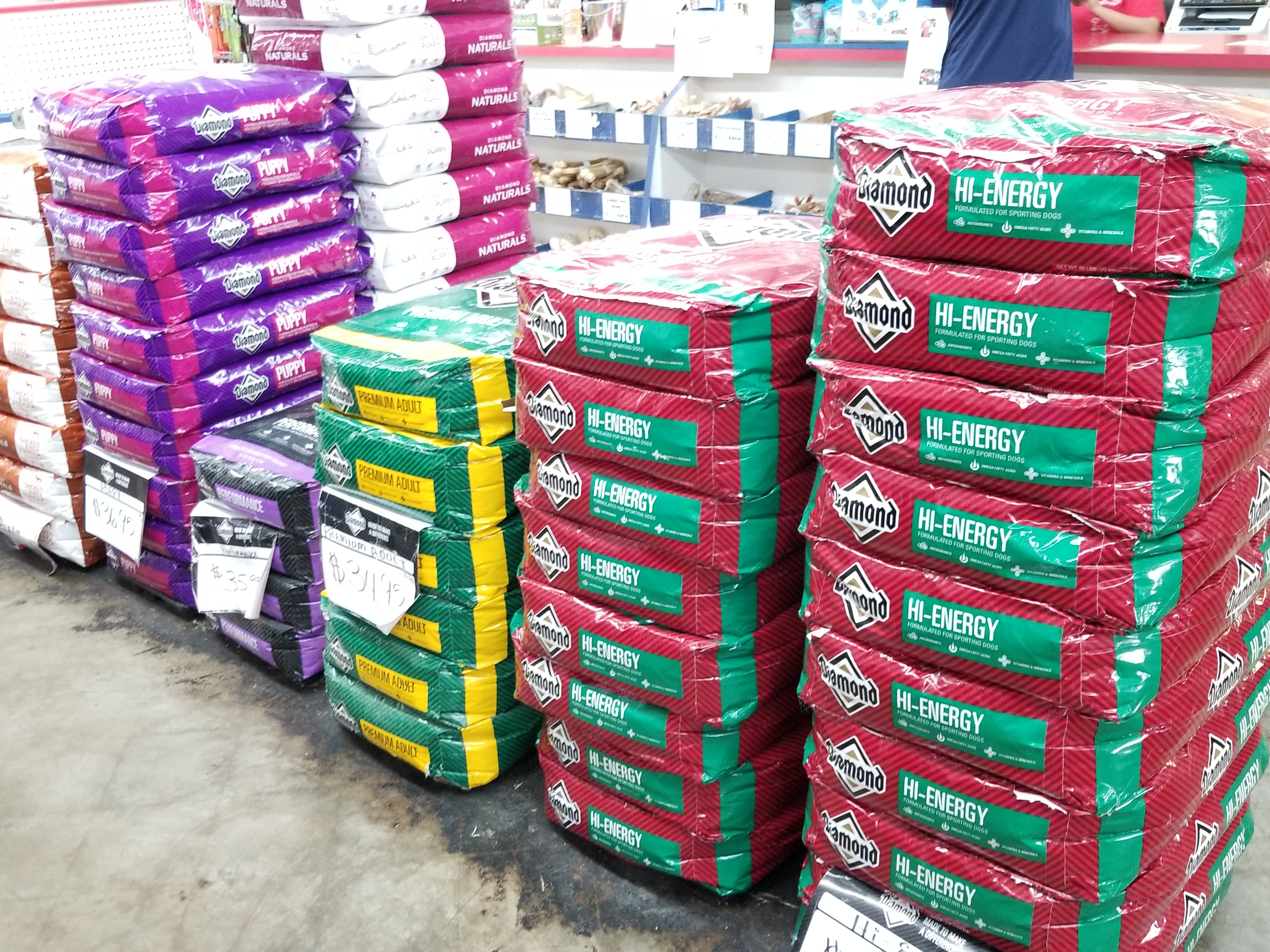 shells feed garden supply tampa florida pet food all life stages diamond best dog food