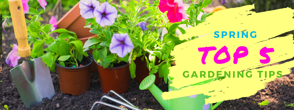 Top 5 Spring Gardening Tips Shell S Feed Garden Supply