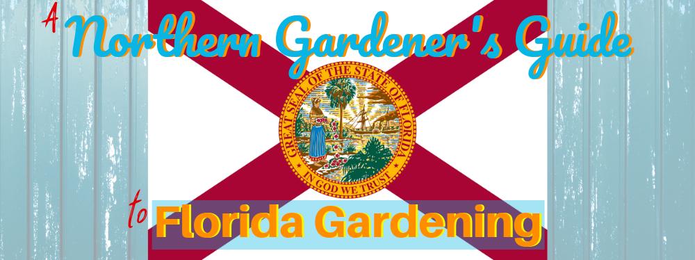 A Northern Gardener's Guide to Florida Gardening