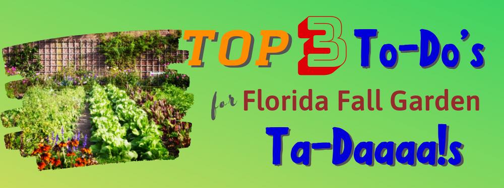 Top 3 To-Dos for Florida Fall Garden TA-DAAA!s