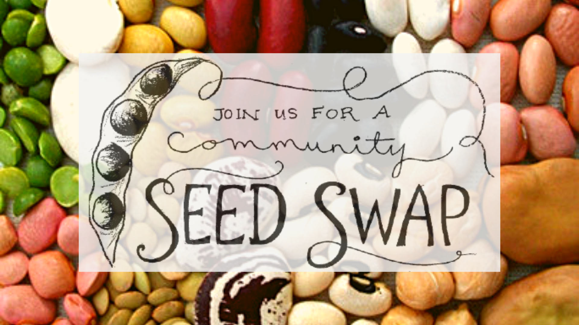 monthly community seed swap