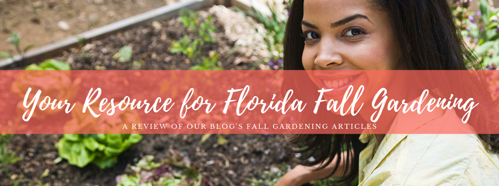 Your Resource for Florida Fall Gardening
