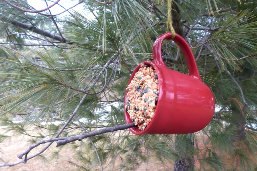 wild birds coffee cup bird feeder