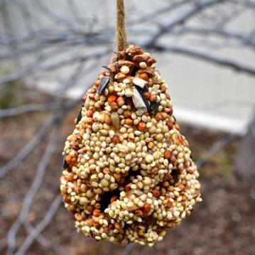 wild birds peanut butter DIY pine cone
