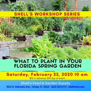 What to Plant In Your Spring Garden @ Shell's Feed & Garden Supply, Inc