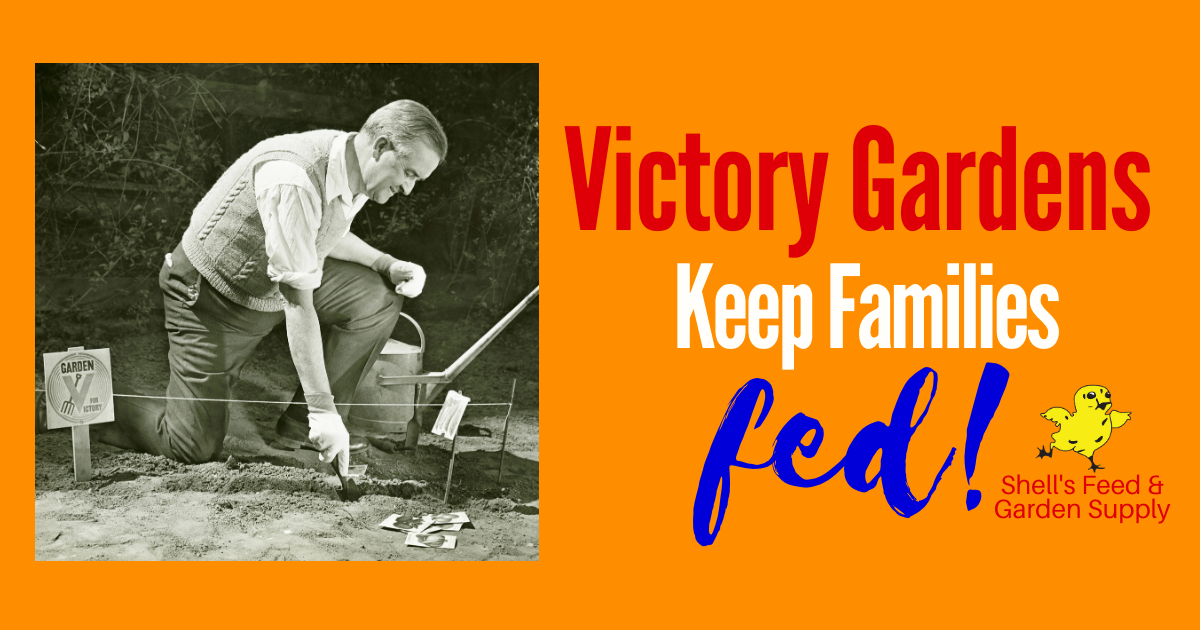 Victory Gardens Keep Families Fed!