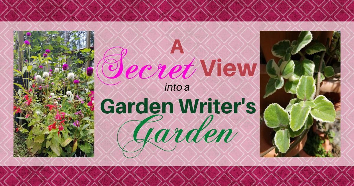 A Secret View Into a Garden Writer's Garden