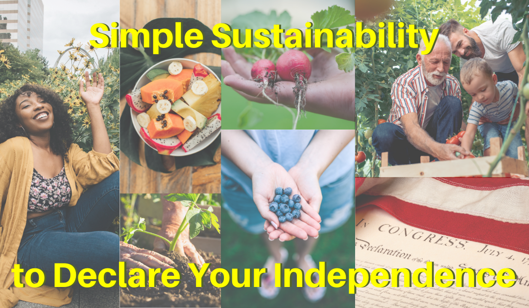 Simple Sustainability to Declare Your Independence
