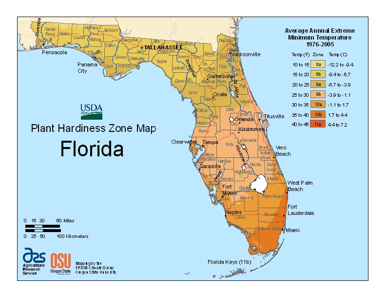 gardening plant hardiness zone map from the USDA