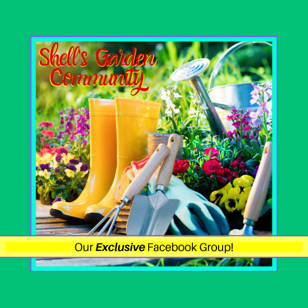 Shell's Garden Community - your private group about local gardening on Facebook!