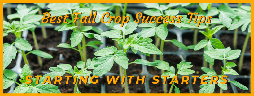 starting with starters fall crop
