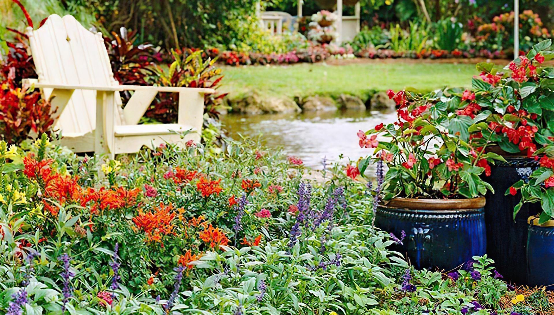pretty wildflower garden