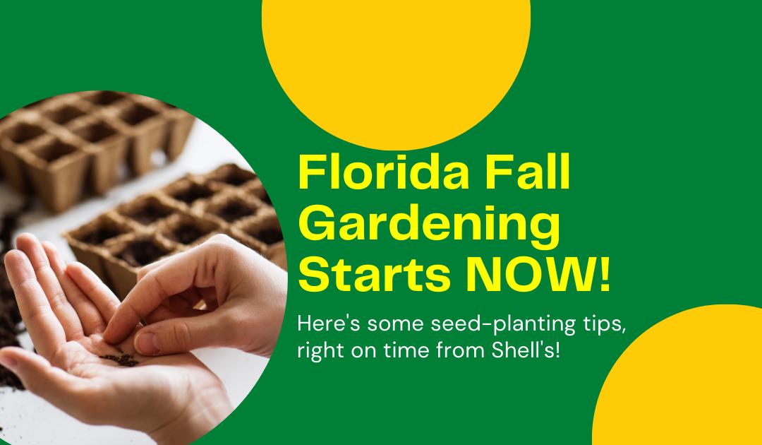 Florida Fall Gardening Starts NOW!