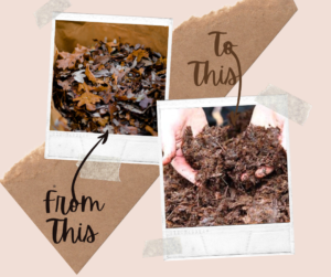 Leaf mold creation process