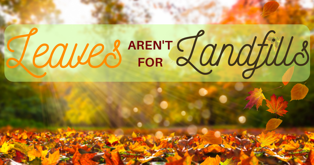Leaves Aren't For Landfills