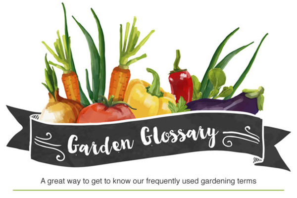 Shell's Feed & Garden Supply - The Garden Glossary