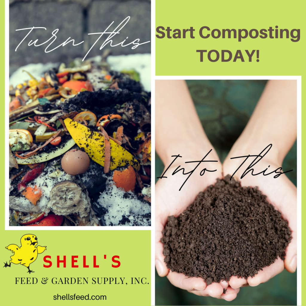 Turn Kitchen Scraps Into Compost Gold, Start Composting Today