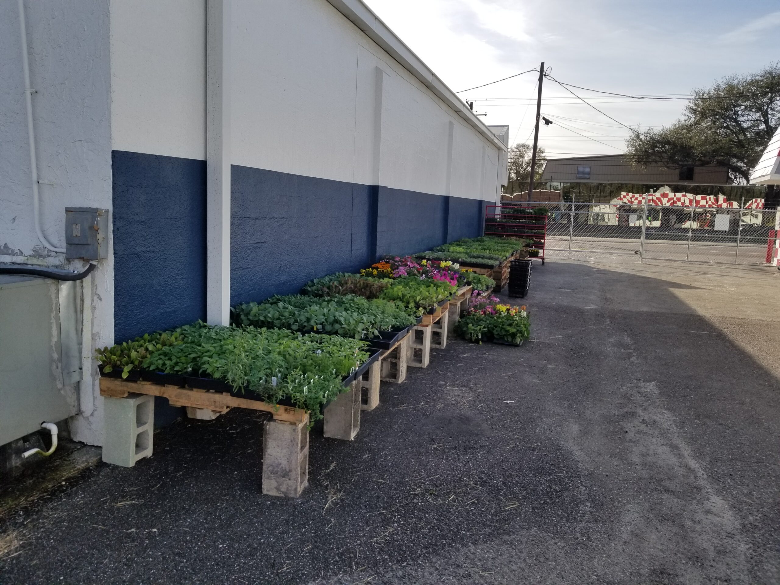 New Garden Shopping Area at Shell's