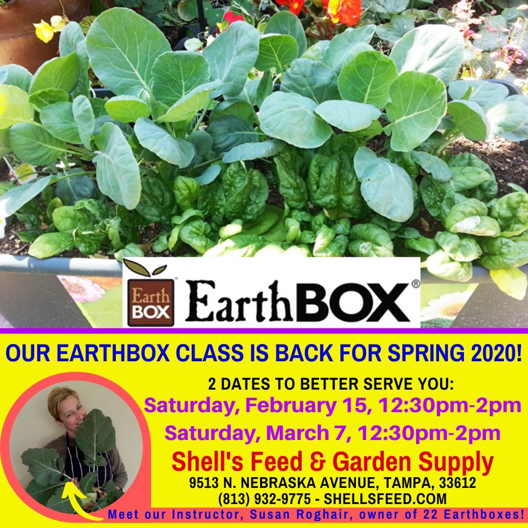 Earthbox Class