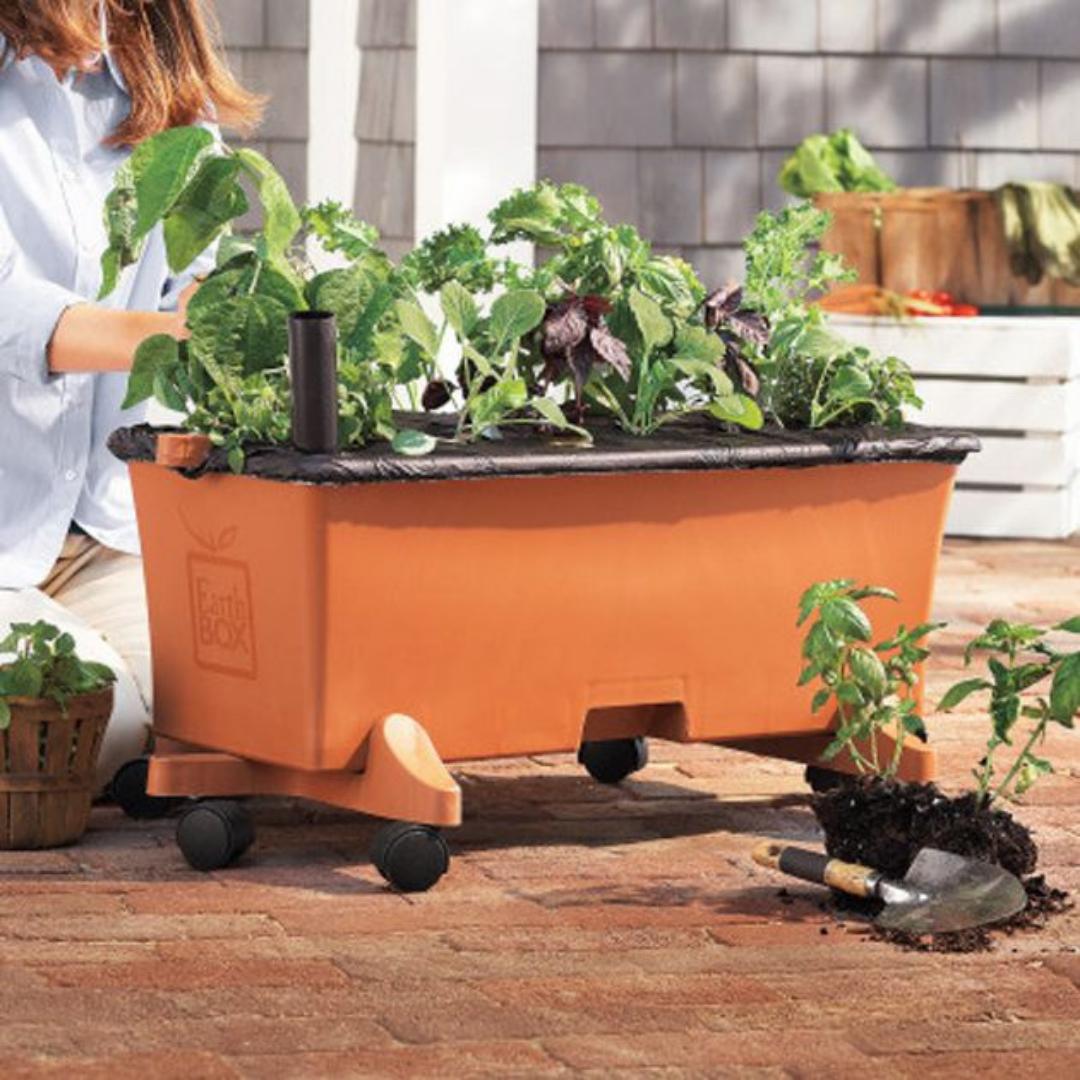 EarthBOX Keeps Your Soil safe from soil-borne pathogens